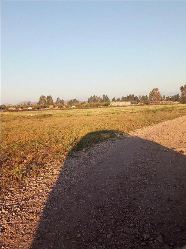 terrain 10000 m2 a route de casa