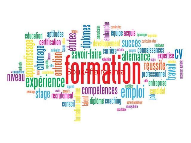 Formateurs dans plusieurs disciplines