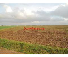 Terrain 22 Ha, Bouskoura - ouled saleh