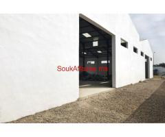 Batiment industriel 1700 m², Bir Rami