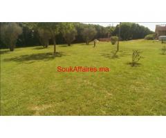 terrain de 2 hectares à Sidi Rahal à coté de la plage