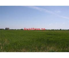 Terrain agricole de 180000 m²