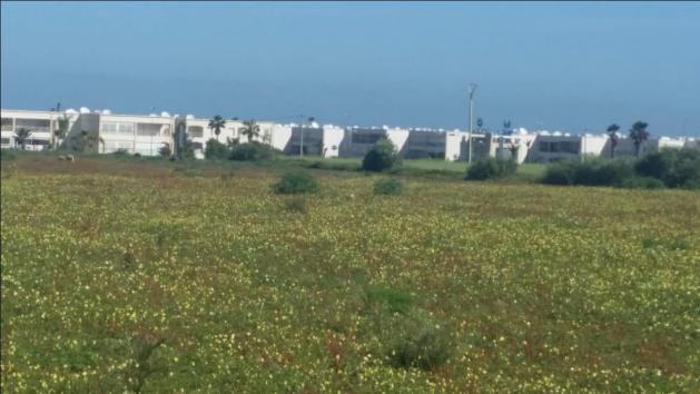 TERRAIN de 6 hectare pour un projet R2 pied sur la plage