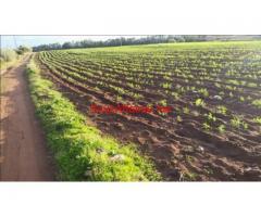 terrain de 8 hectares 80DH M2 à Sidi Rahhal