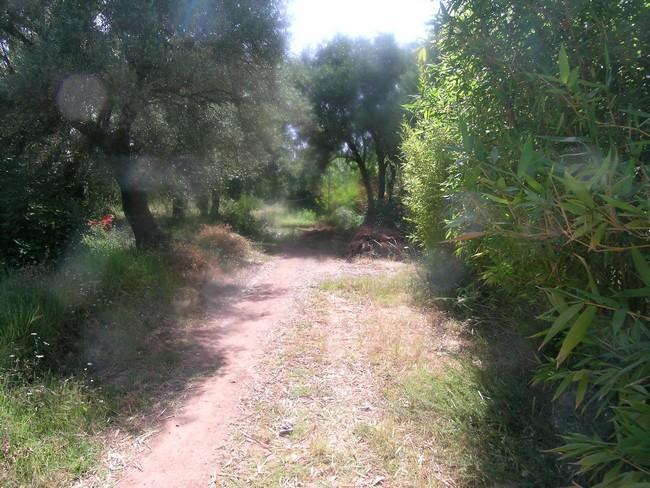 Terrain à vendre route de l'ourika