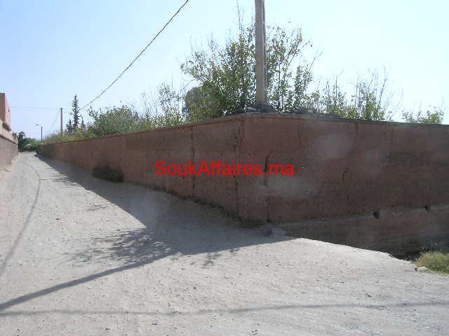 Terrain 2 ha bord de route de l'ourika km 19