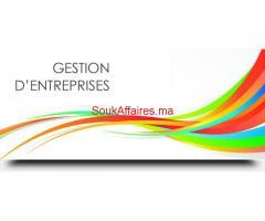 Formation Gestion des Entreprises